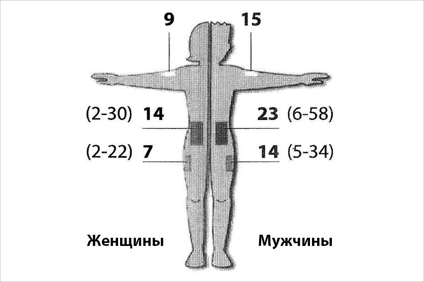 pavasaris-2014-adatas-garums-ru